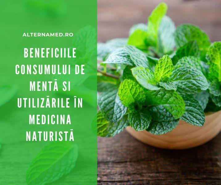 Beneficiile consumului de mentă și utilizările în medicina naturistă